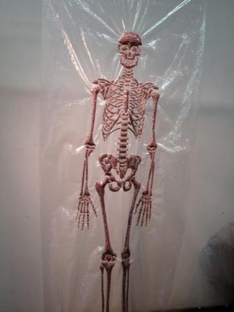 skeleton-web.jpg